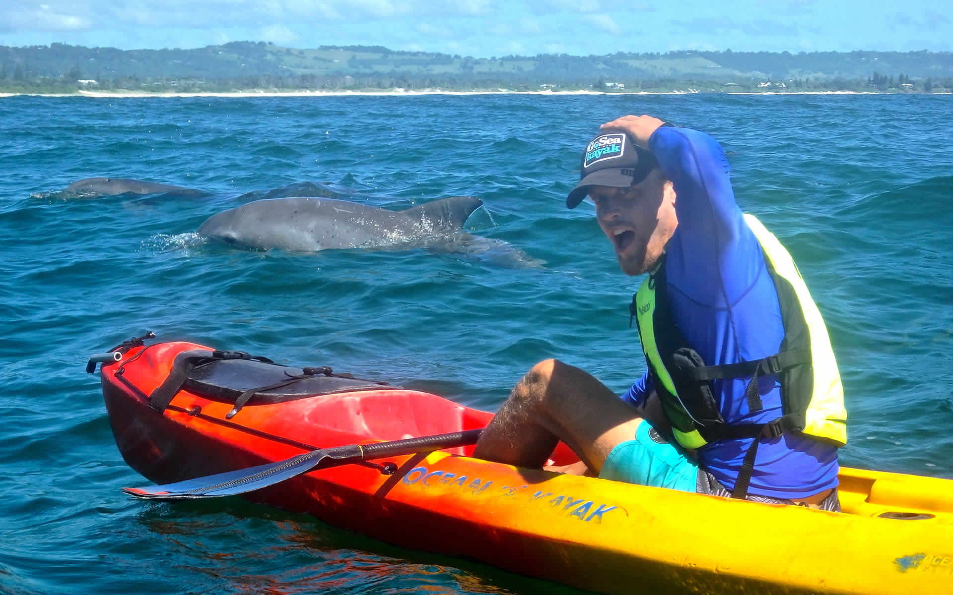 Kayak with the locals